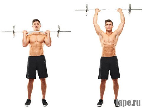 Базовые упражнения для набора массы в бодибилдинге
