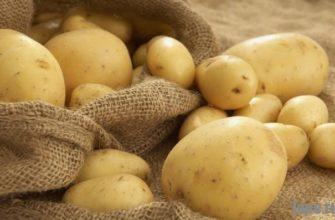Плюсыи минусы хранения картофеля на балконе зимой