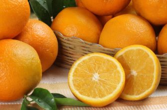 Апельсины: состав, калорийность, польза и вред для здоровья